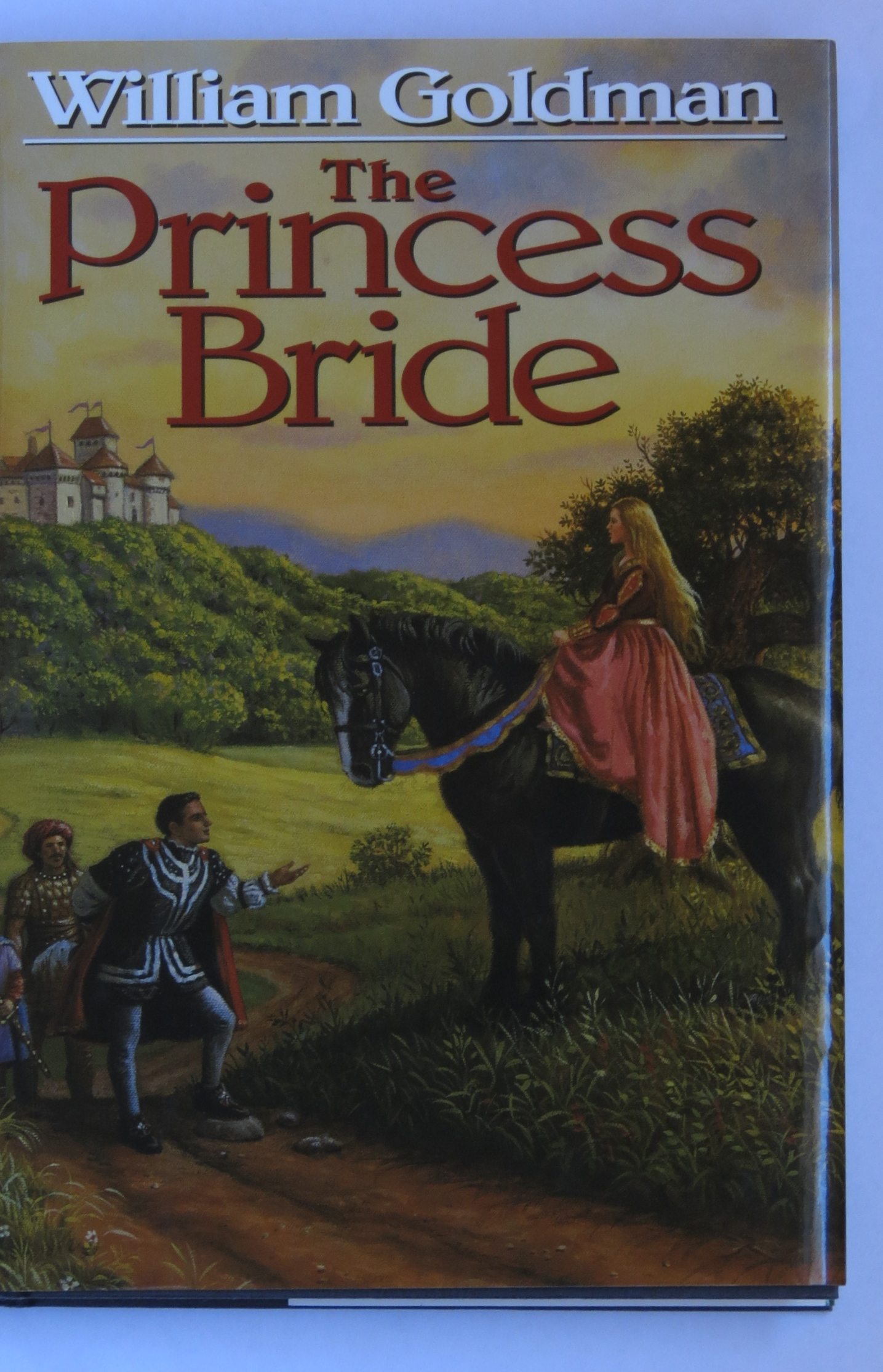 the princess bride essay the princess bride an illustrated edition of s morgenstern s classic